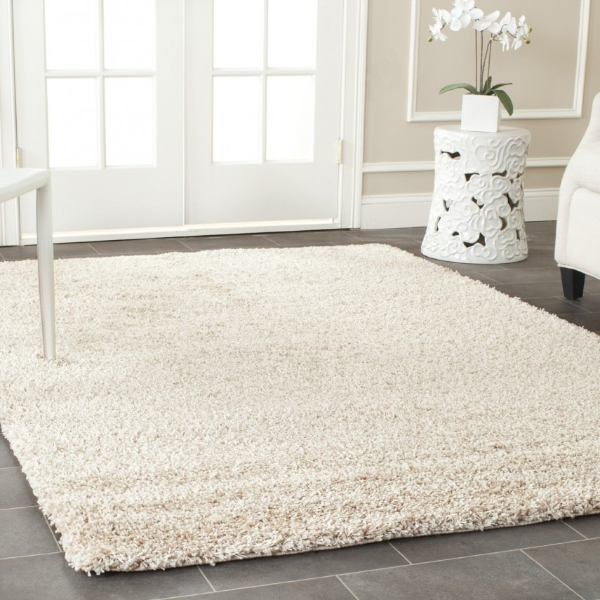Area Rugs 8x10 | Affordable Area Rugs | Target Rugs 4x6