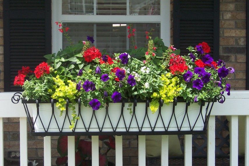 Banister Planters | Deck Planter Ideas | Deck Rail Planters