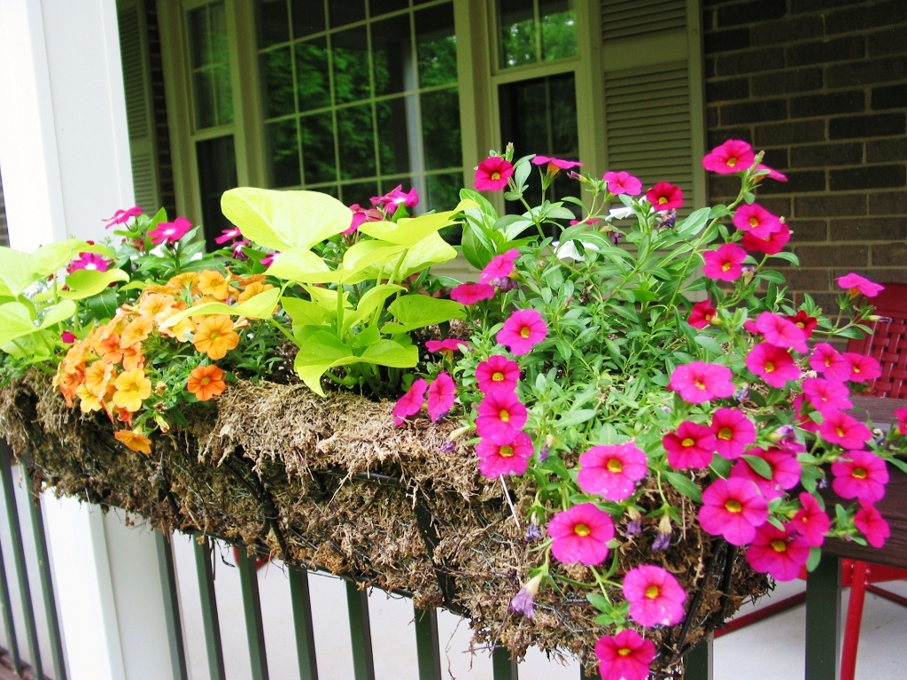 Deck Rail Planters | Deck Rail Planter Box | Deck Railing Planter Boxes