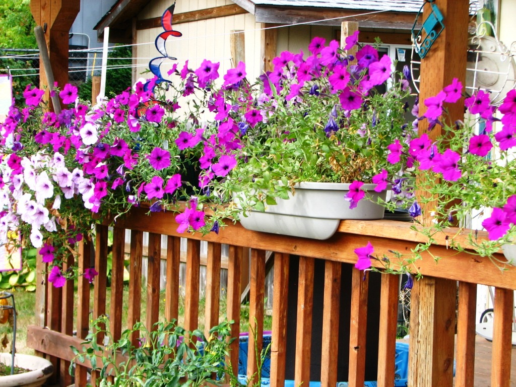 Deck Rail Planters | Deck Rail Planters | Planters for Deck Rails