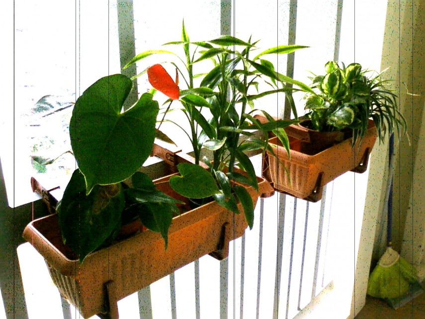 Deck Rail Planters | Diy Railing Planter | Deck Planters