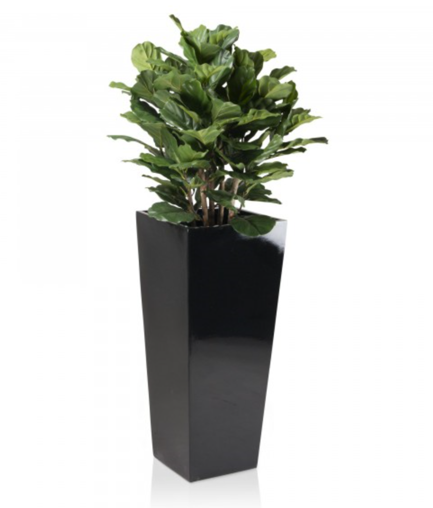 Fiberglass Planters | Planters Los Angeles | Outdoor Resin Planters