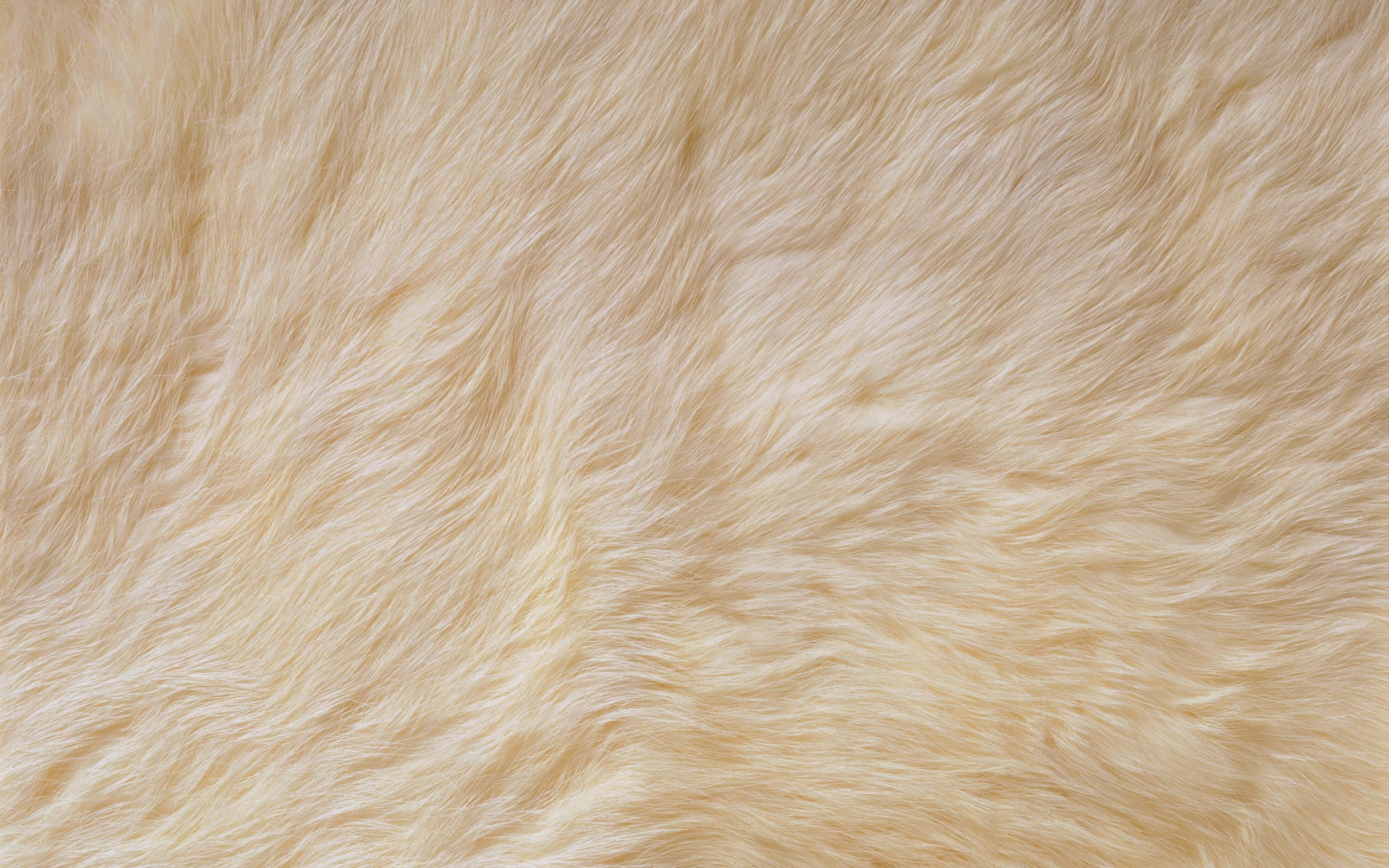 Fabulous Fur Rug for Floor Decoration Ideas: Fur Rug | Pink Sheepskin Rug | Shearling Blanket