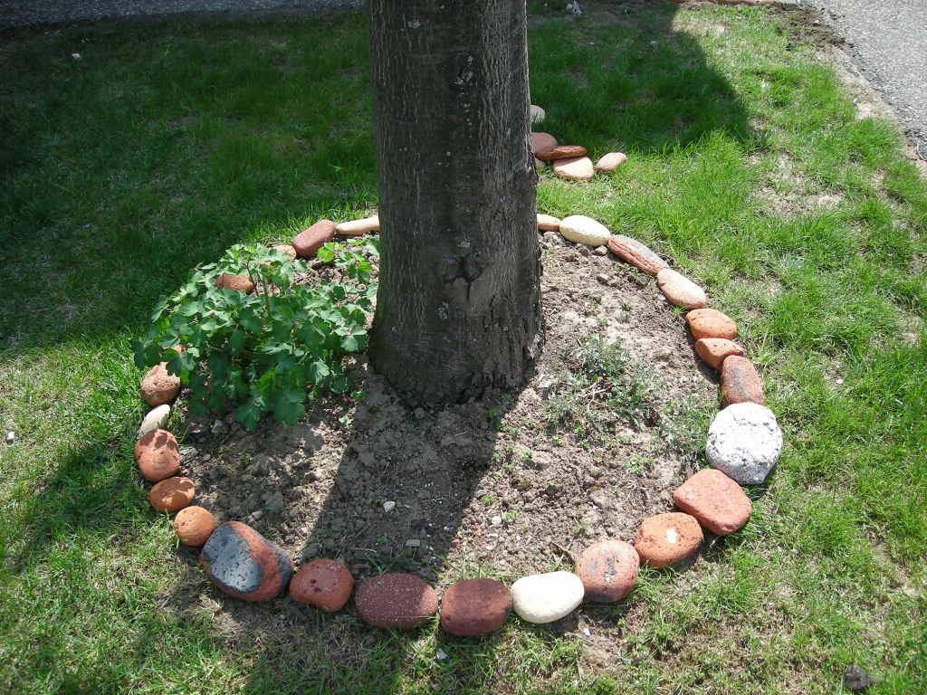 Garden Edging Stones | Landscape Edging Ideas | Edging Around Trees