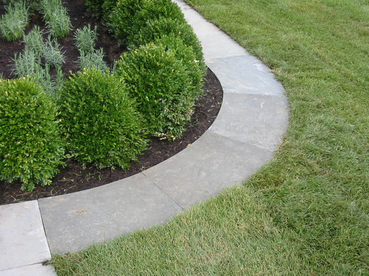 Home Depot Landscaping | Landscape Edging Ideas | Landscaping Edger