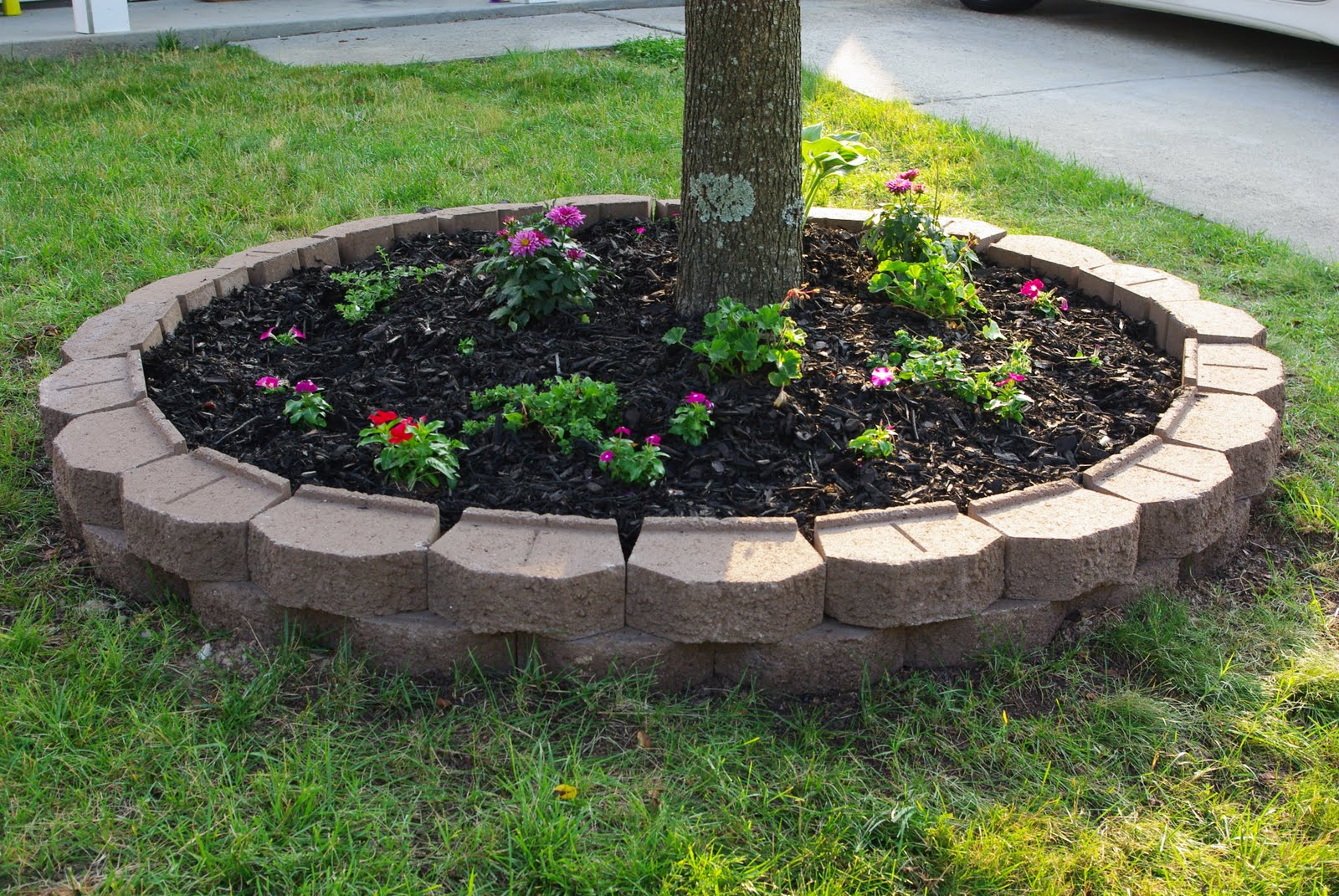 Landscape Border Edging Ideas | Landscaping Border | Landscape Edging Ideas