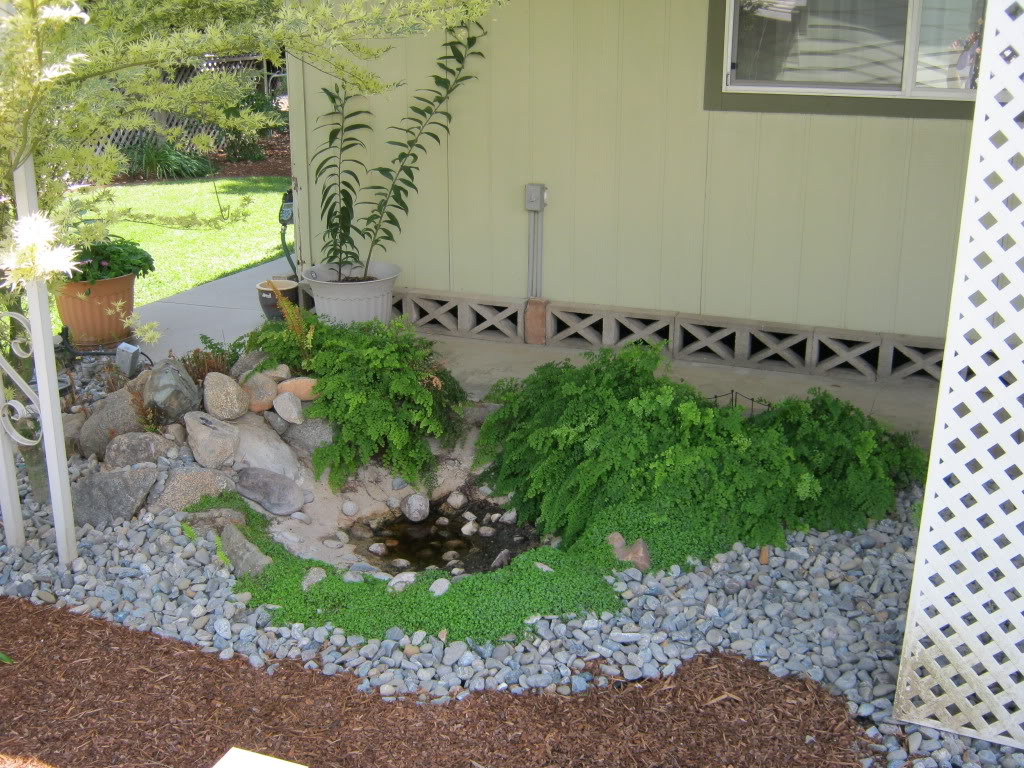 Landscape Edging Ideas | Plastic Landscape Edging | Plastic Lawn Edging