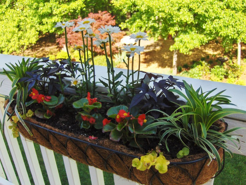 Lowes Planter Box | Deck Rail Planters | Home Depot Planter Box