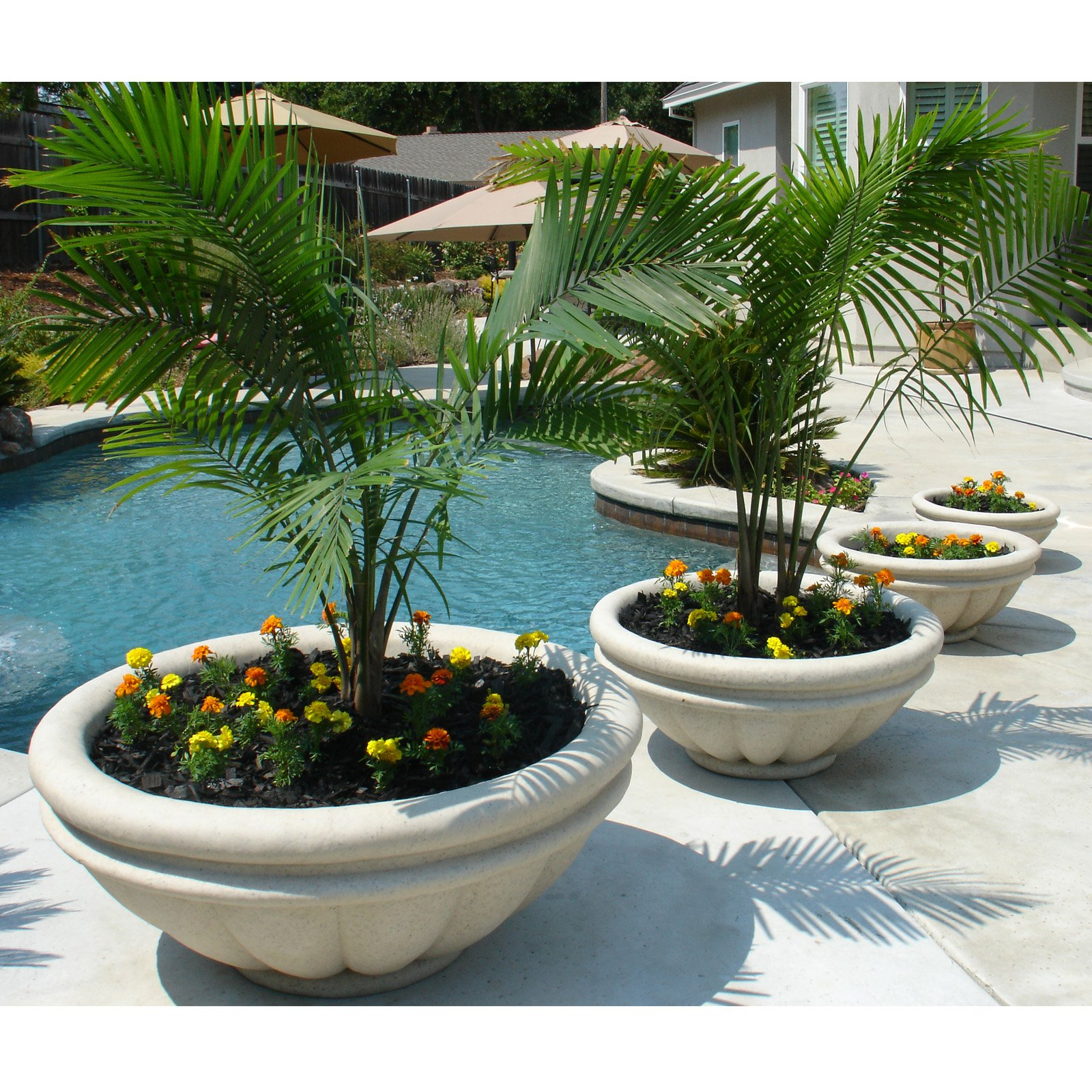 Roof Planters | Fiberglass Planters | Contemporary Flower Pots Large