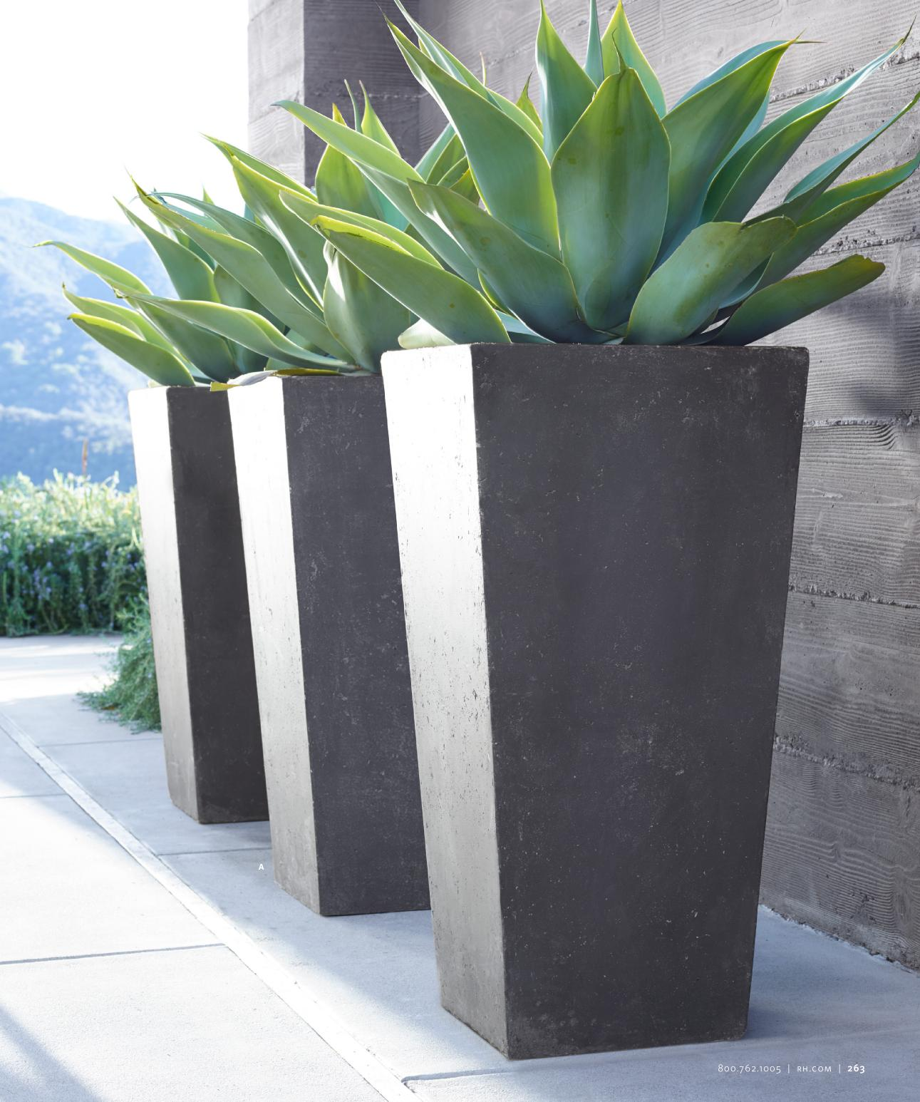 Decor fabulous tall planters for cool garden decoration for Small patio plant ideas