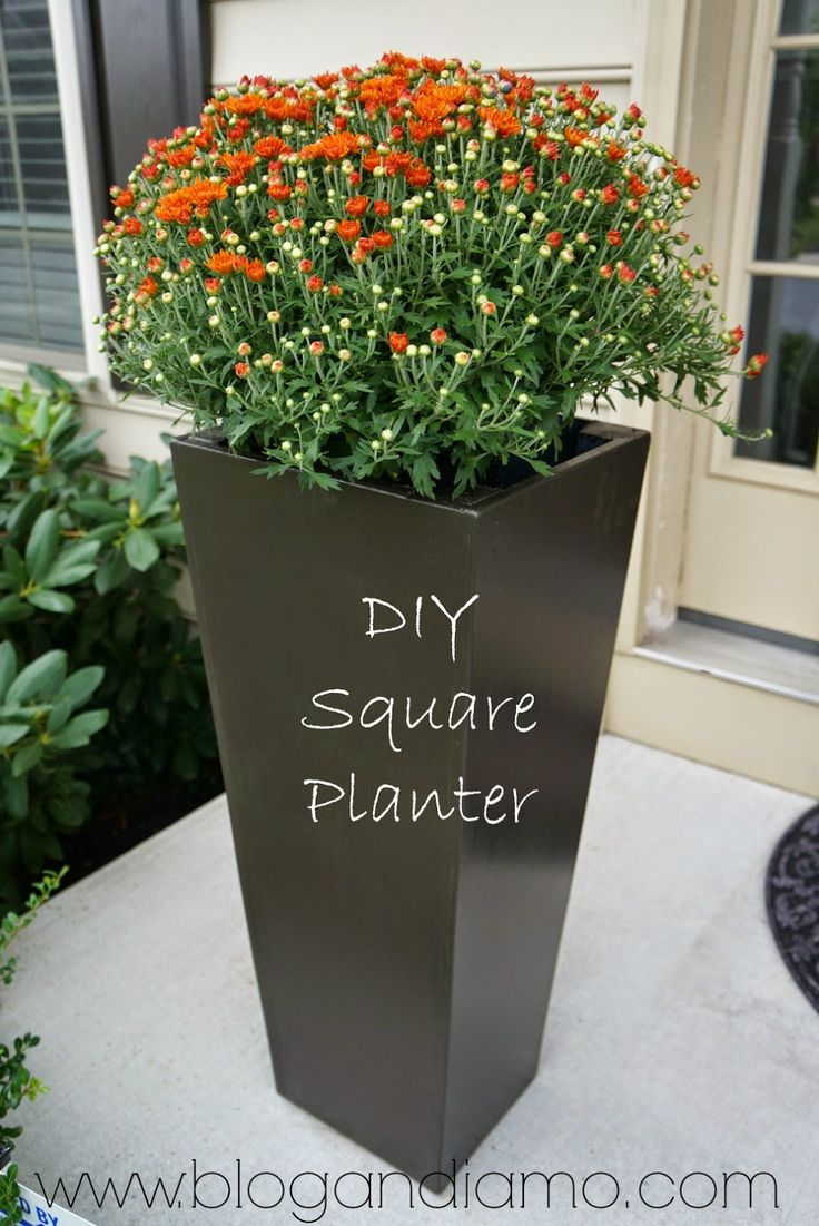 Tall Planters | Shallow Planter | Flower Pot Stand